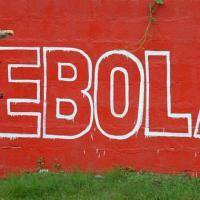 Ўзбекистон Эбола вируси тарқалган мамлакатларга саёҳатларни тўхтатади